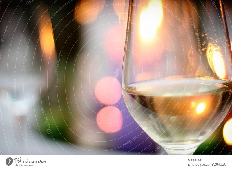 celebration mood Beverage Cold drink Alcoholic drinks Wine Sparkling wine Prosecco Elegant Night life Entertainment Event Feasts & Celebrations Drinking Wedding