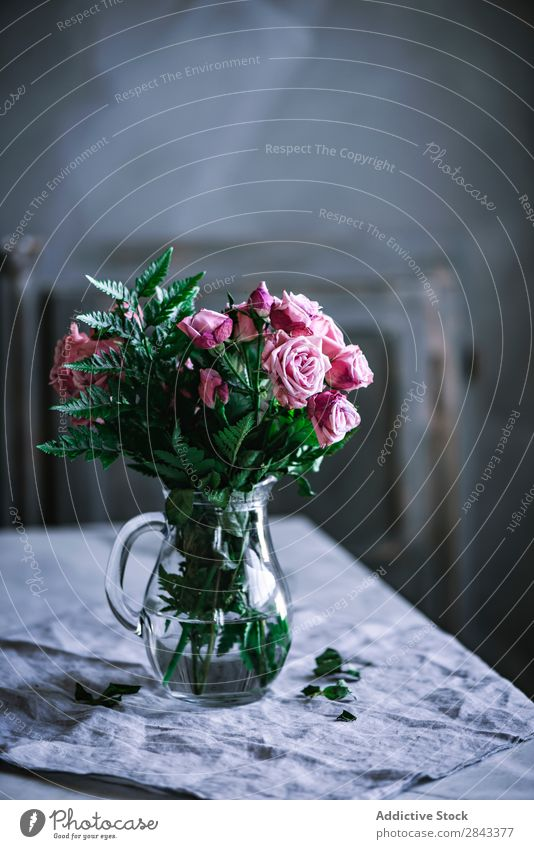 Bunch of pink roses on table flores Studio shot luz rosas casa decoración en casa jarrón Rose Pink Beautiful Flower Glass Jug Nature Love Beauty Photography