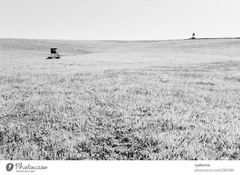 Nature Summer Loneliness Calm Landscape Environment Meadow Freedom 2 Horizon Field Esthetic Communicate Break Threat Hill