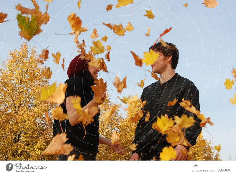 leaf rain Friendship Couple Youth (Young adults) 2 Human being Nature Autumn Tree Smiling Happiness Happy Joy Joie de vivre (Vitality) Enthusiasm Euphoria