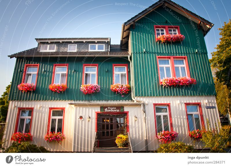 Vacation & Travel Beautiful Flower House (Residential Structure) Environment Window Building Germany Tourism Living or residing Idyll Village Picturesque Harz