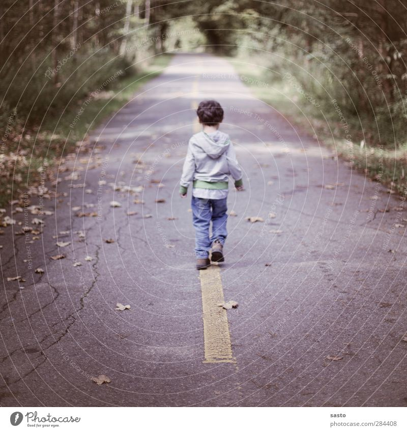 Human being Child Nature Green Leaf Forest Yellow Street Autumn Boy (child) Gray Freedom Going Infancy Masculine Authentic
