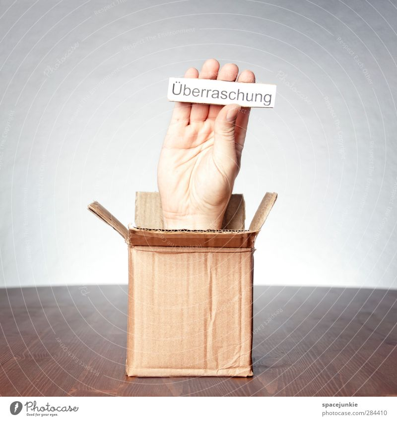 surprise Masculine Hand Fingers Exceptional Creepy Uniqueness Brown Yellow Anticipation Surrealism Cardboard Stop Funny Surprise Gift Birthday Package Mail