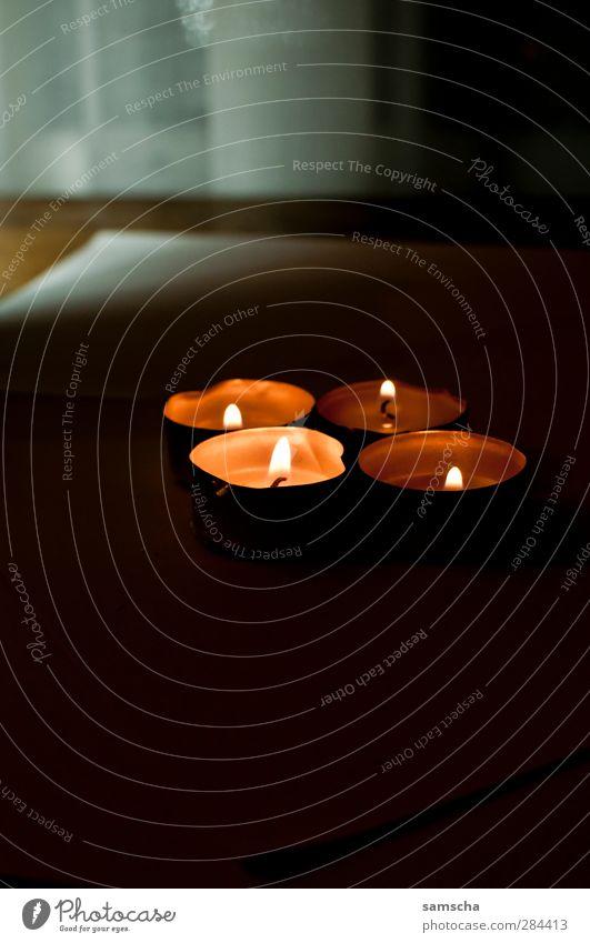 Christmas & Advent Beautiful Dark Warmth Feasts & Celebrations Bright Moody Anti-Christmas Warm-heartedness Decoration Fire Romance Candle Hot Illuminate Burn