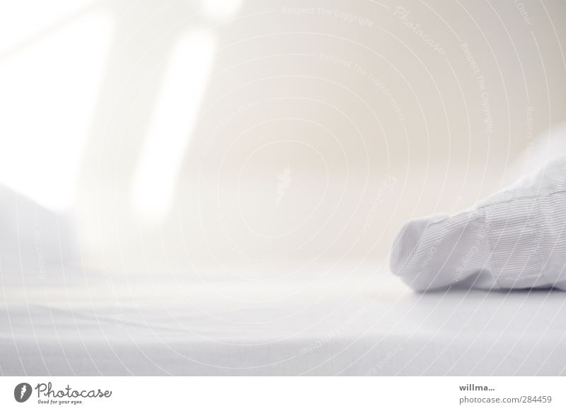 White Relaxation Calm Bright Living or residing Clean Bed Nursing Bedroom Purity Sheet Hospitality Health care Safe haven Pillow Cushion