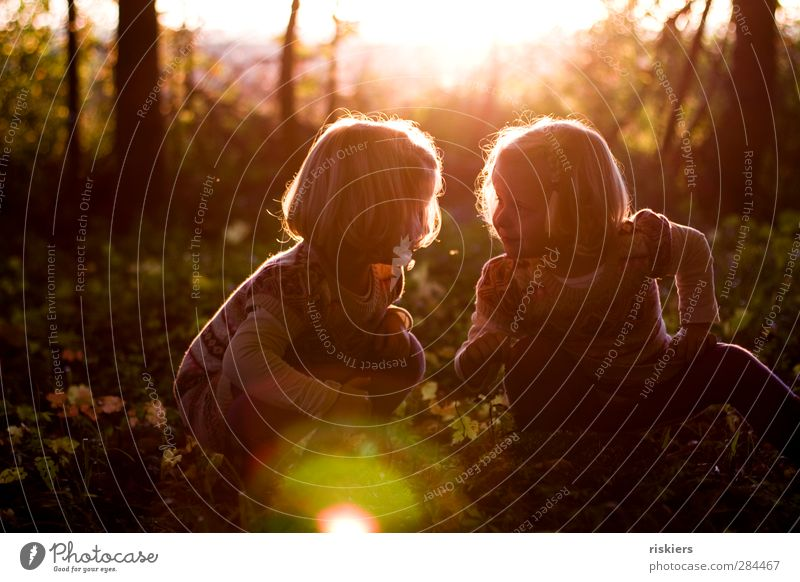 Human being Child Nature Summer Sun Girl Forest Environment Autumn Feminine Happy Family & Relations Together Illuminate Infancy Free