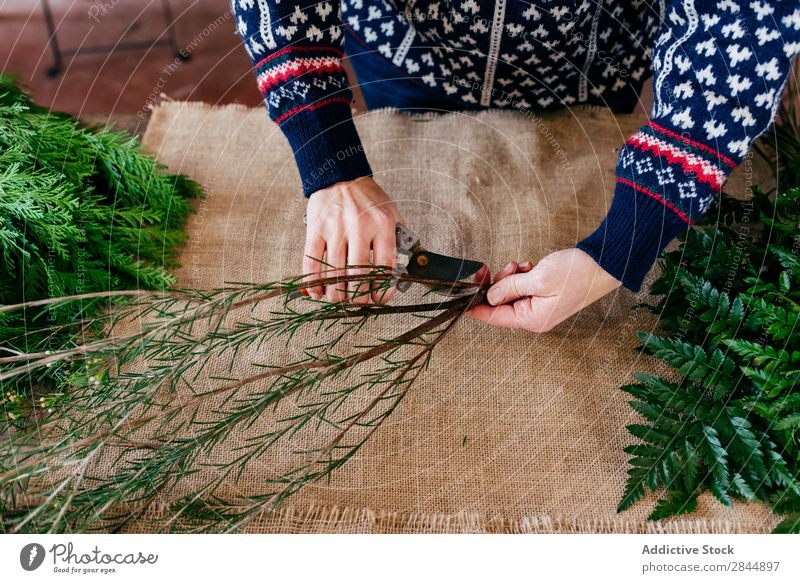 Crop person cutting twigs Human being Twig Plant Branch Decoration Green Seasons Linen