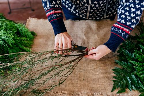 Crop person cutting twigs Human being Twig Plant Branch Decoration Green Seasons bunch Linen Cloth Hand Leisure and hobbies Bouquet Florist pruner careful