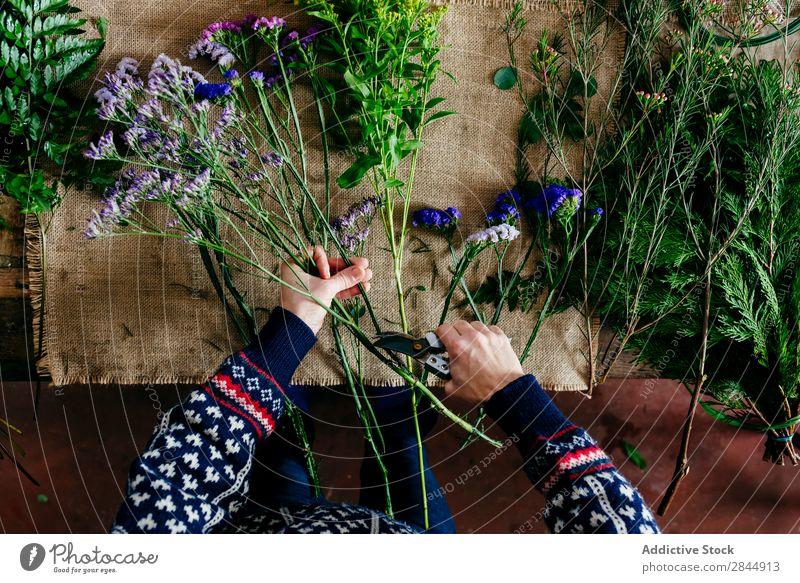Crop hands cutting flowers Hand Flower Bouquet Beautiful Nature Floral Florist Blooming
