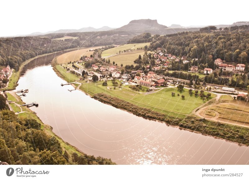 Elbe valley Environment Nature Landscape Plant Summer Beautiful weather Meadow Hill Mountain River bank Saxon Switzerland Saxony Federal eagle Elbtalaue