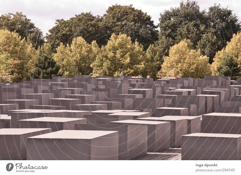 remembrance Berlin Remember Memory Monument Holocaust memorial Grief Germany Colour photo Exterior shot Deserted Day Sunlight Deep depth of field