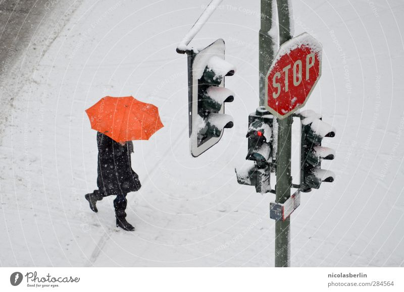 snow from yesterday Winter Snow Human being 1 Climate Climate change Weather Bad weather Storm Ice Frost Snowfall Pedestrian Street Traffic light Road sign Sign