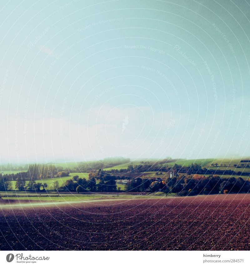 rest day Agriculture Forestry Environment Nature Landscape Earth Sky Clouds Plant Agricultural crop Meadow Field Hill Fresh Blue Design Freedom Peace
