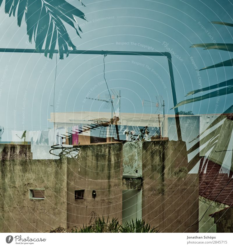Sky Old Blue Town Ocean House (Residential Structure) Travel photography Building Facade Roof Apartment Building Spain Palm tree Blue sky Double exposure Frame