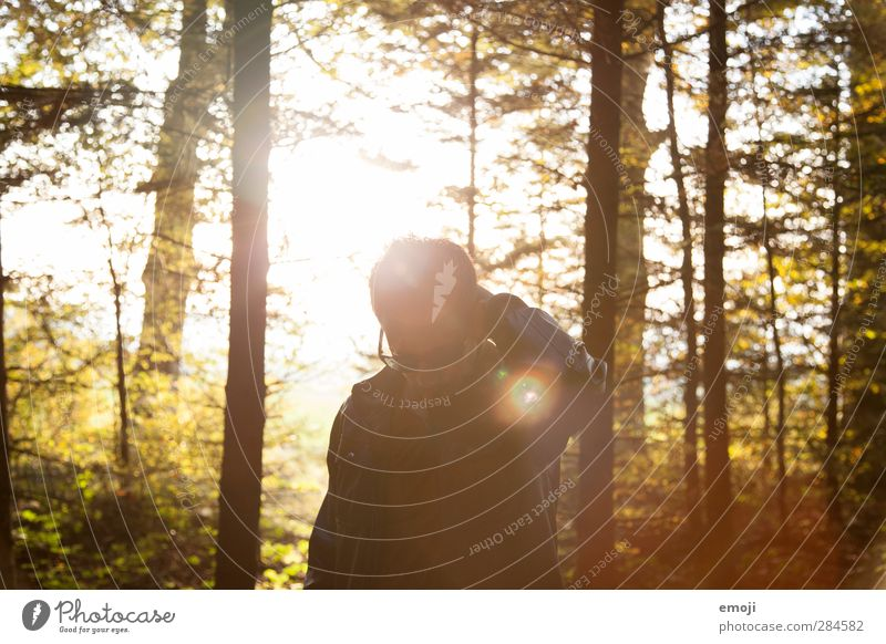 Autumn leaves Masculine Young man Youth (Young adults) 1 Human being 18 - 30 years Adults Environment Nature Beautiful weather Forest Hip & trendy Colour photo