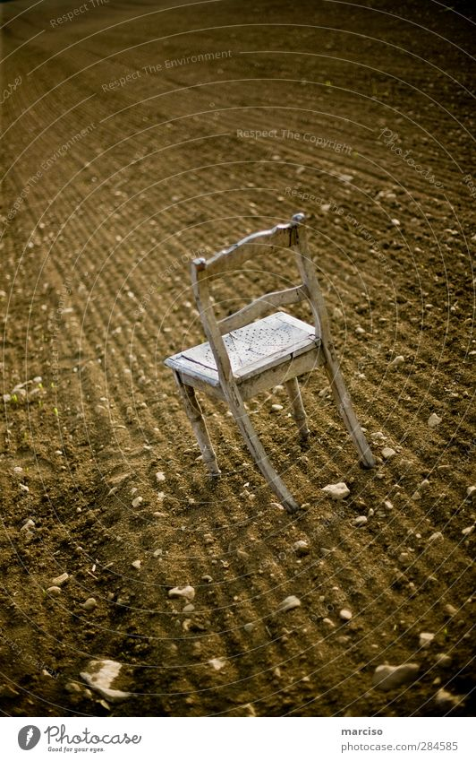 The lonely chair Chair Academic studies Art Exhibition Stage play Theatre Culture Earth Field Wood Sit Wait Patient Calm Modest Loneliness Perturbed