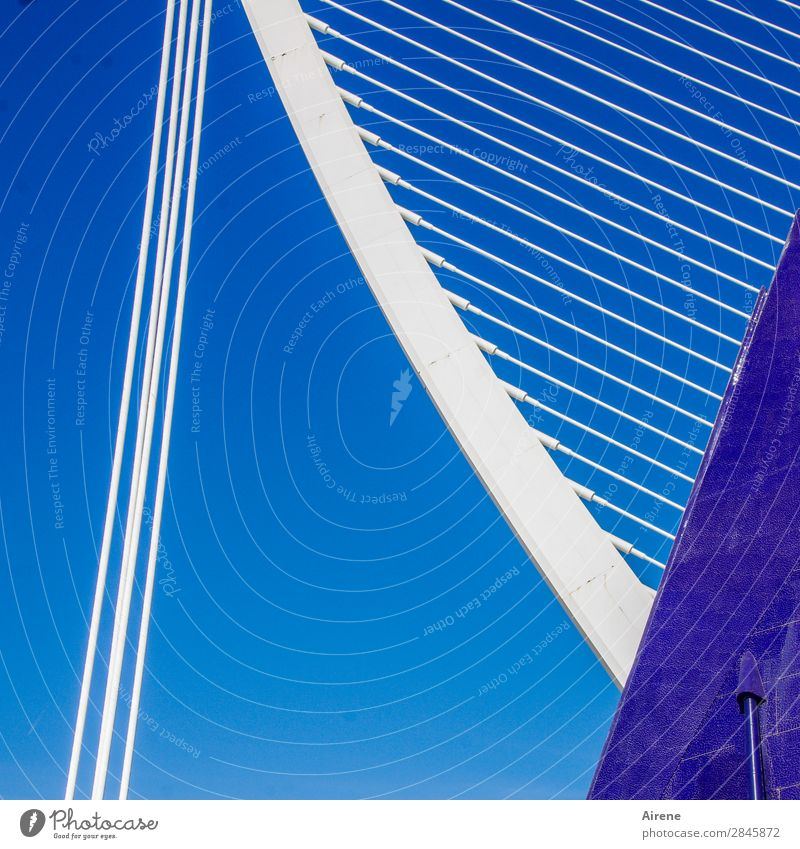 IIII\\\\\\\\\\\\/ Museum Architecture Culture Cloudless sky Valencia Manmade structures Tourist Attraction Wire cable Steel Line Parallel Tilt Esthetic