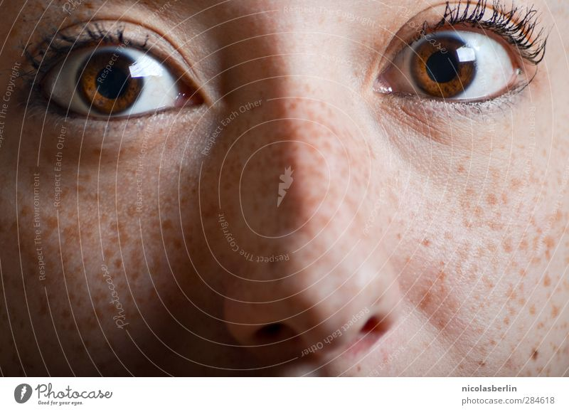 Human being Youth (Young adults) Young woman 18 - 30 years Face Adults Eyes Emotions Natural Feminine Brown Wild Crazy Nose Curiosity Belief