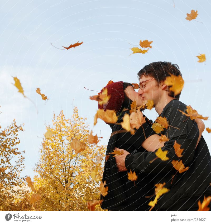 kiss of leaves Couple Partner Nature Autumn Beautiful weather Leaf Kissing Smiling Embrace Free Happy Natural Warmth Joy Happiness Contentment