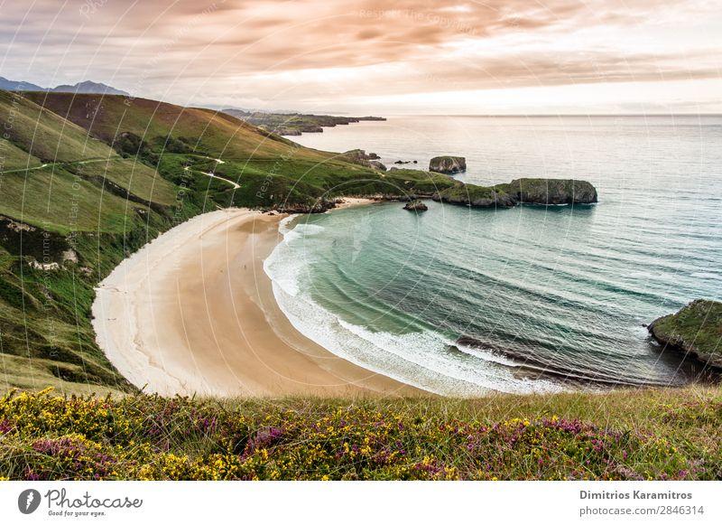 Torimbia beach in Spain Sky Vacation & Travel Nature Summer Blue Beautiful Green Water Landscape Flower Clouds Loneliness Calm Beach Environment Coast