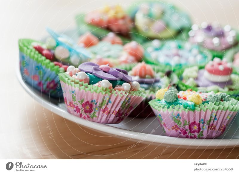 sugar world Muffins Cupcakes Dessert Dish Eating Food photograph Sugar Sweet Candy Decoration Chocolate Delicious Cooking Hip & trendy Nutrition calorie bomb