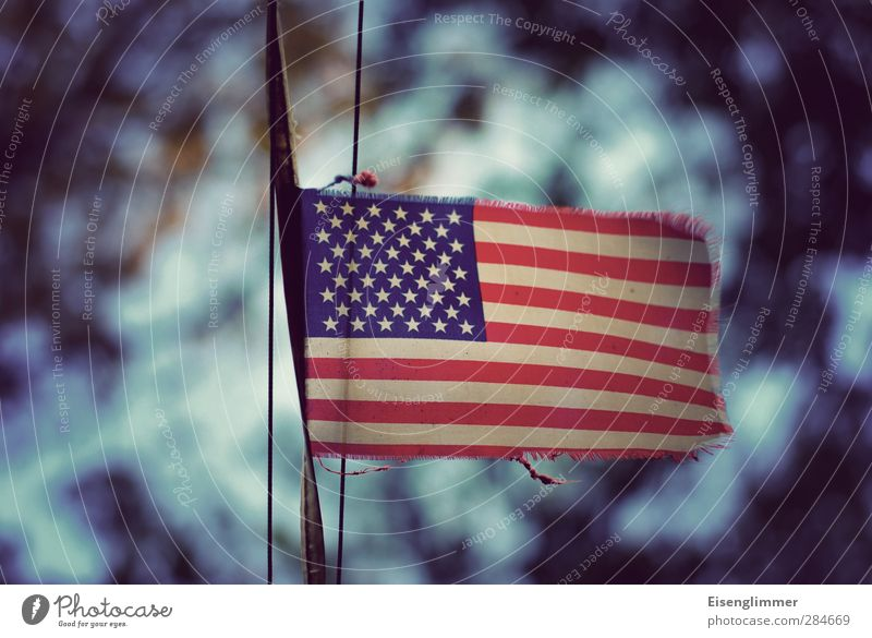 Blue Red Freedom Dream Gloomy Might Hope Culture Flag American Flag Pride Weathered Agreed Fringe Ensign Tattered