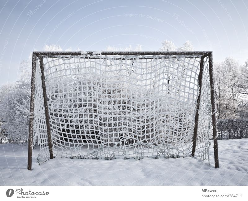 gate Winter Handball Ice Frozen Branch Tree Blue Field Frost Soccer Sky Horizon Cold Deserted Net Light (Natural Phenomenon) Snow Sun Sunrise Lighting Day Goal