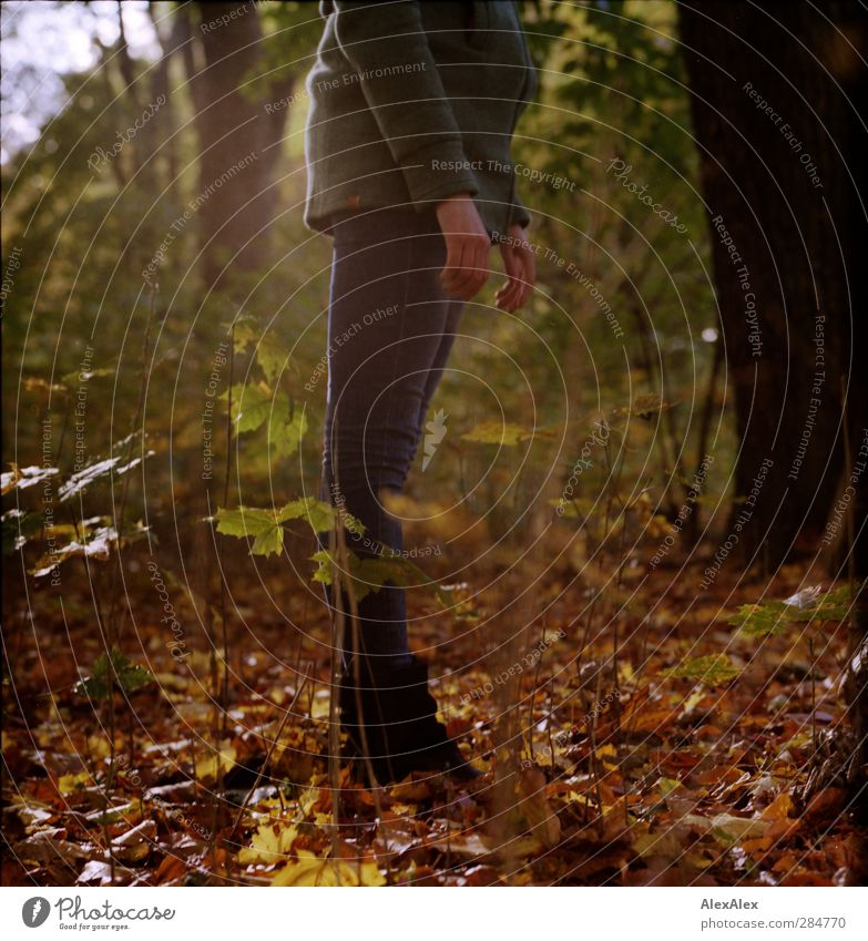 [wald-photo-tour HH] too big for the 50mm Young woman Youth (Young adults) Hand Legs 1 Human being 18 - 30 years Adults Plant Tree Bushes Leaf Forest Park Coat