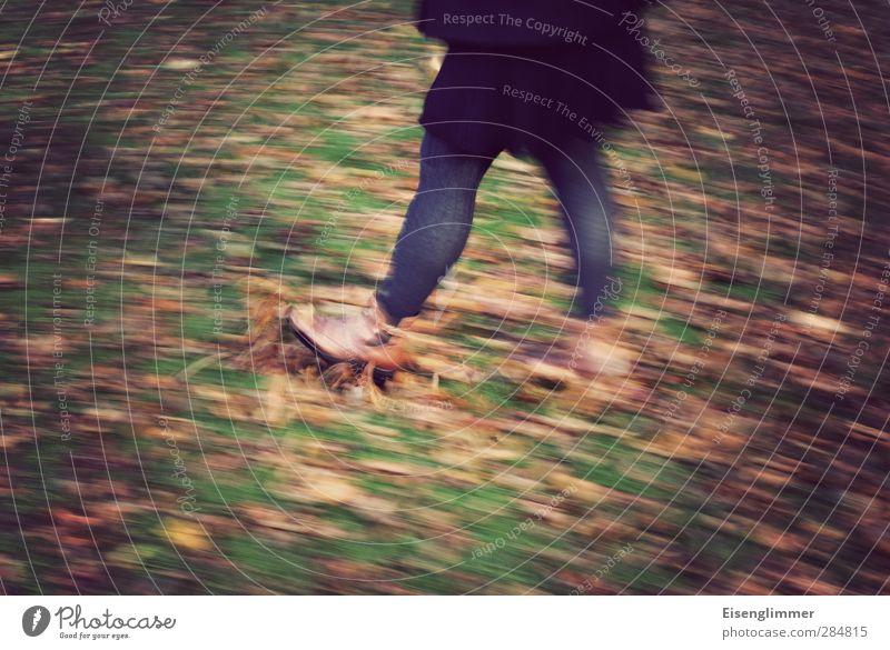 Human being Woman Joy Leaf Adults Meadow Cold Autumn Feminine Movement Legs Feet Footwear To go for a walk Joie de vivre (Vitality) Skirt