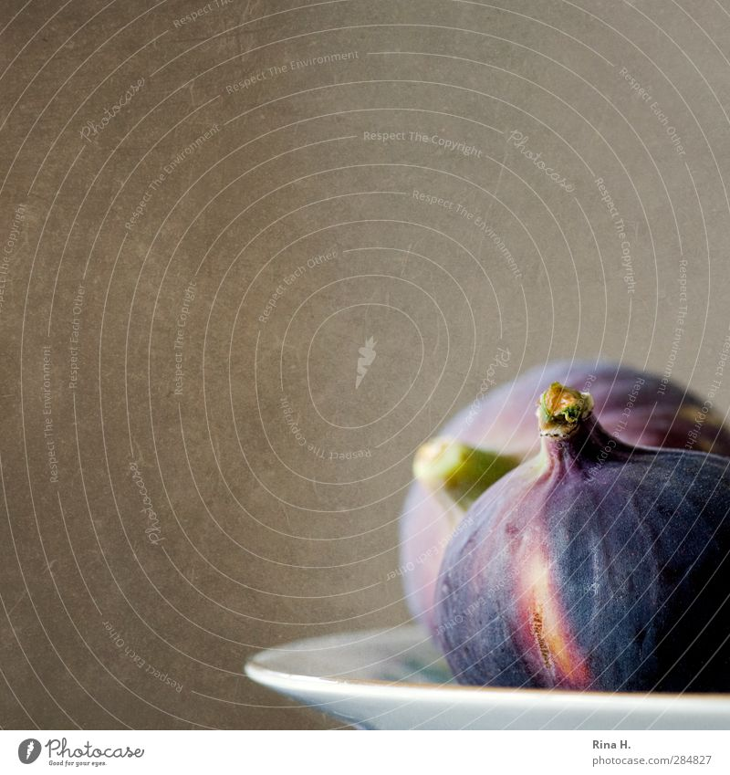 figs Food Fruit Nutrition Vegetarian diet Plate Fresh Delicious To enjoy Fig Colour photo Interior shot Deserted Shallow depth of field