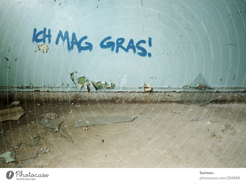 Old House (Residential Structure) Graffiti Wall (building) Grass Dye Wall (barrier) Dirty Floor covering Corner Smoking Derelict Decline Intoxicant Addiction Figure of speech