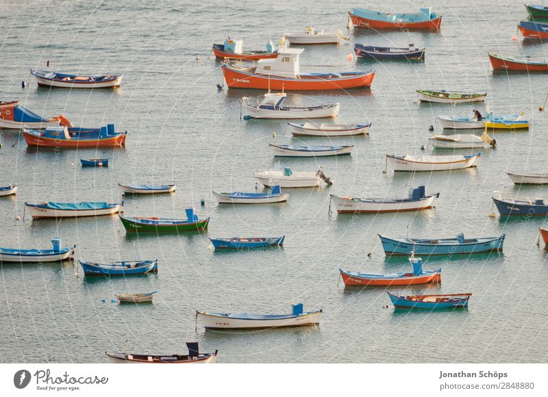 Boats off Tenerife Watercraft Ocean Fishing boat Pattern Many Boating trip Harbour Summer Multicoloured Deserted Canoe Red Blue Vacation & Travel Relaxation