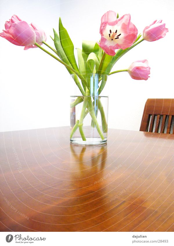 White Flower Wood Table Bench Interior design Tulip
