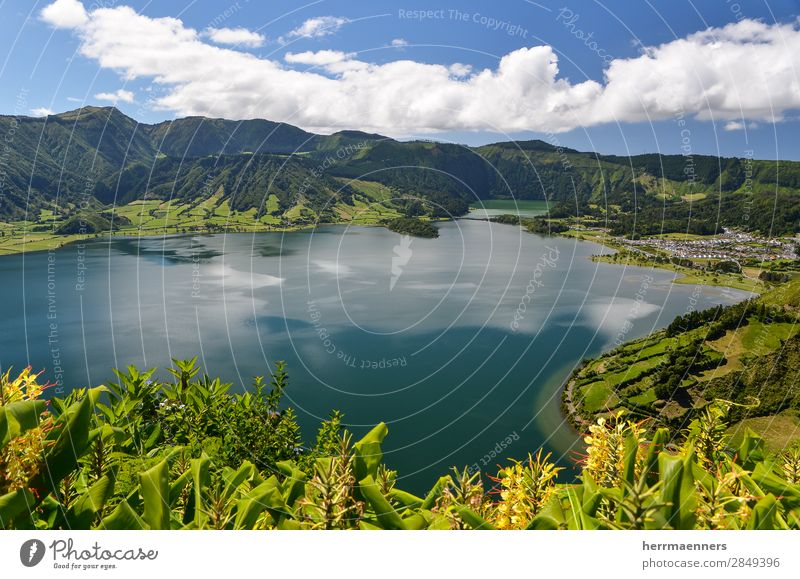 Azores 02 Nature Landscape Plant Water Sky Clouds Summer Flower Bushes Leaf Blossom Foliage plant Wild plant Mountain Volcano Volcanic crater Lakeside