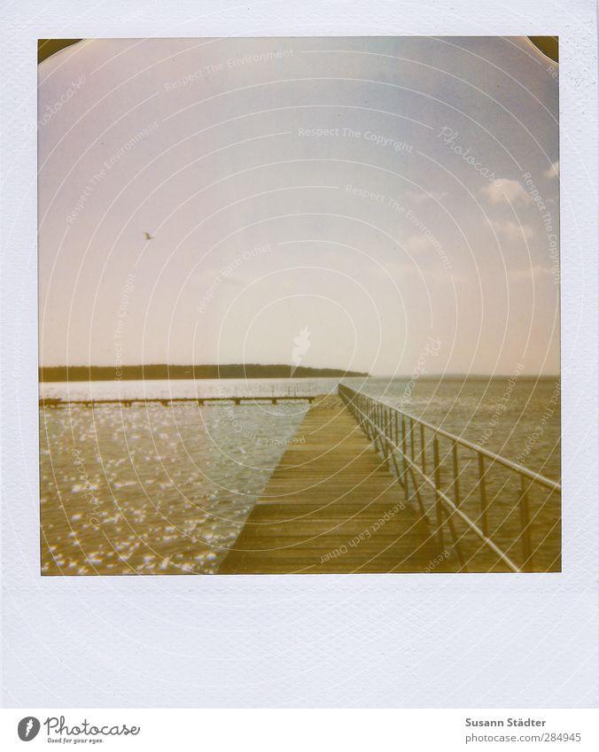 I was here. Nature Elements Water Sky Sunlight Waves Coast Lakeside Truth Footbridge Handrail Hold Freedom Müritz Bird Flying Free space Autumnal Polaroid
