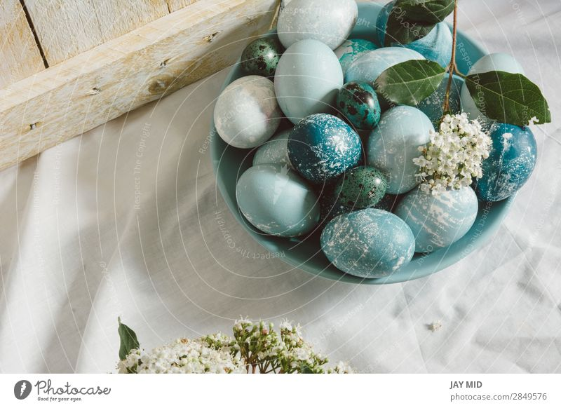 Blue easter eggs on the table. tea time Food Breakfast Beautiful Decoration Feasts & Celebrations Easter Christmas & Advent Flower Green White Tradition Egg