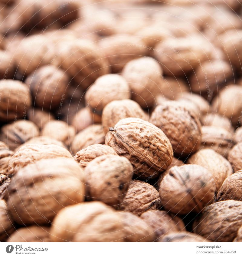 Walnut - Juglans regia Food Picnic Organic produce Vegetarian diet Slow food Nut Walnut kernel Agricultural crop Wild plant Common walnut Nutcrackers