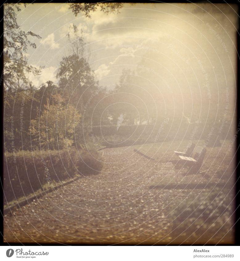 [wald-photo-tour-hh] Tanning bed Tourism Trip Sightseeing Landscape Clouds Sun Autumn Tree Grass Bushes Park Meadow Park bench Stone Concrete Lanes & trails