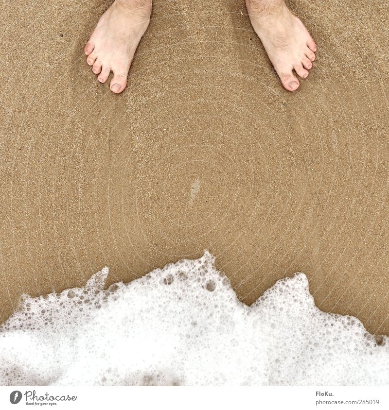 The feet and the sea Vacation & Travel Tourism Trip Summer Summer vacation Beach Ocean Human being Masculine Feet 1 Nature Sand Water Coast North Sea Stand Wait
