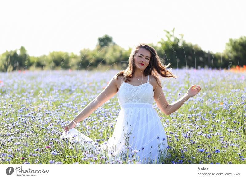 Portrait of a young woman on a cornflower field pretty Blue Girl Hair and hairstyles Happy portrait Woman Young woman Bouquet Field Model Nature Spring Summer