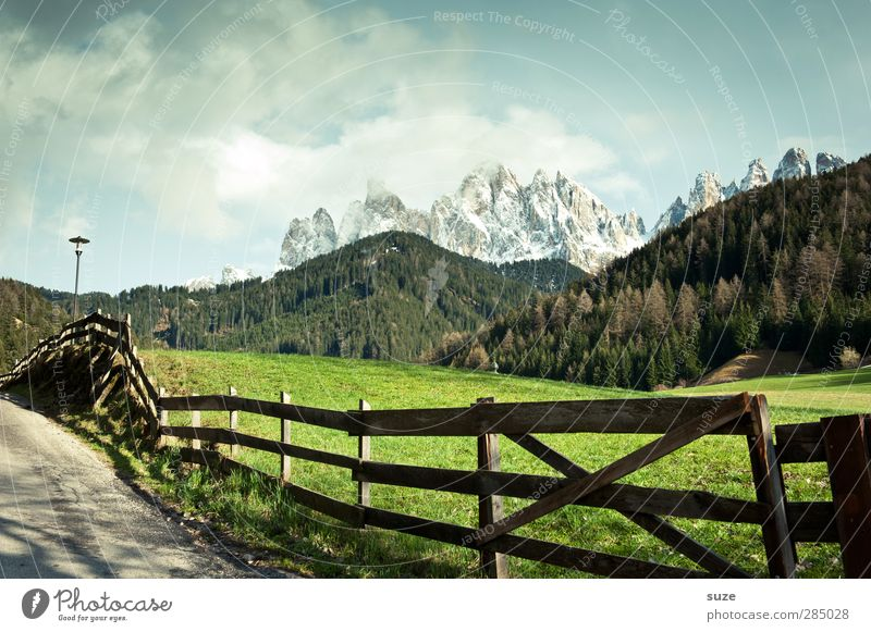 Sky Nature Green Summer Loneliness Landscape Forest Environment Meadow Mountain Lanes & trails Exceptional Climate Beautiful weather Idyll Alps