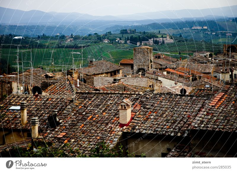 Roofs over S.G. Summer vacation Tuscany San Gimignano Italy Art Landscape Sunrise Sunset Hill Vineyard Village Old town House (Residential Structure) Antenna