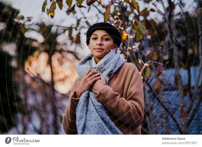 Woman posing near tree with lights Light Beautiful Youth (Young adults) Portrait photograph Human being Tree
