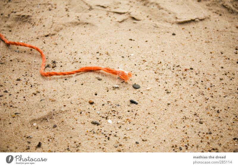 flotsam and jetsam Sand Coast Beach Environmental pollution String Rope Plastic Orange Detail Motionless Still Life Washed up Trash Colour photo Multicoloured