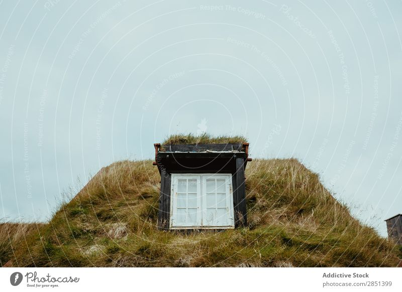 Window in house covered with grass House (Residential Structure) Landscape Rural Grass Roof Construction Architecture Natural Nature Green scenery Covered