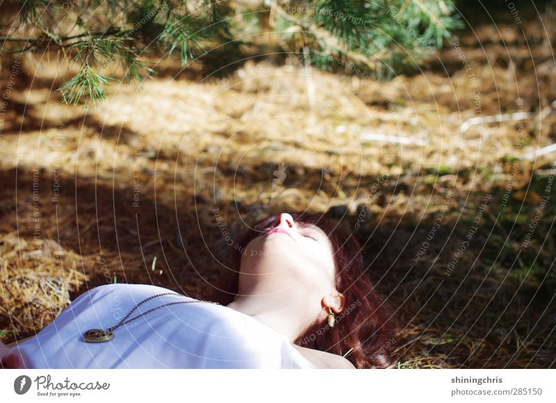 beauty sleep Feminine Young woman Youth (Young adults) Face 1 Human being 18 - 30 years Adults Nature Autumn Beautiful weather Fir branch Fir needle Forest