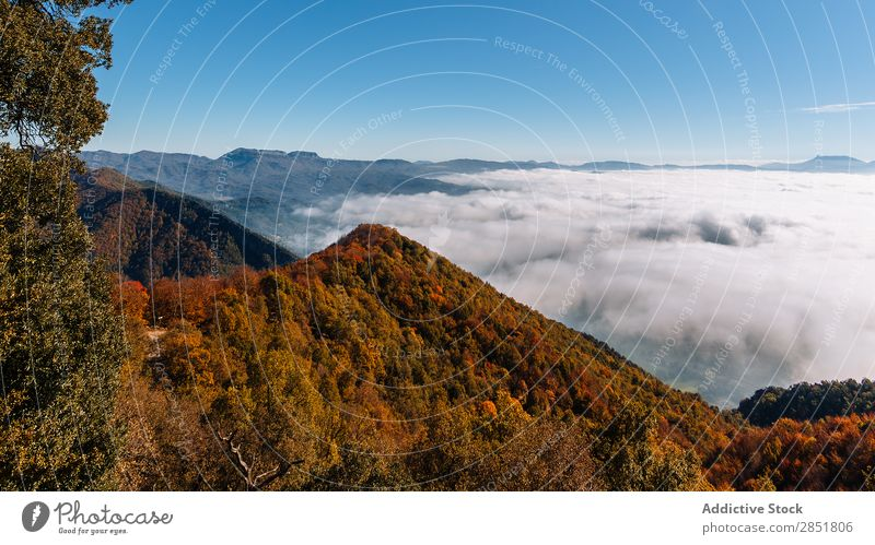 Aerial view of a valley Aircraft Clouds Forest Spain Catalonia osona bellmunt Mountain Blue Sky Nature Landscape Height Sun Vacation & Travel Autumn