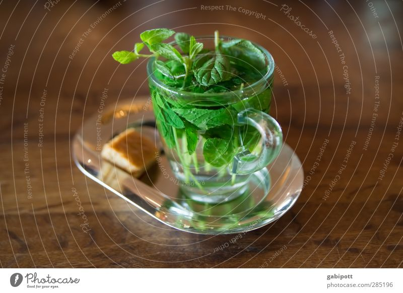 good towards November (and February) Beverage Drinking Hot drink Tea Mint Peppermint tea Cup Glass Beautiful Healthy Alternative medicine Nursing Wellness Life