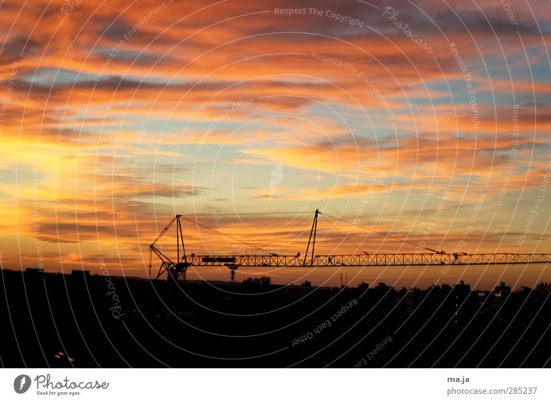 Crane in the evening light (At the window 4) crane boom Sky Clouds Sunrise Sunset Blue Multicoloured Yellow Gold Orange Red Black Colour photo Exterior shot