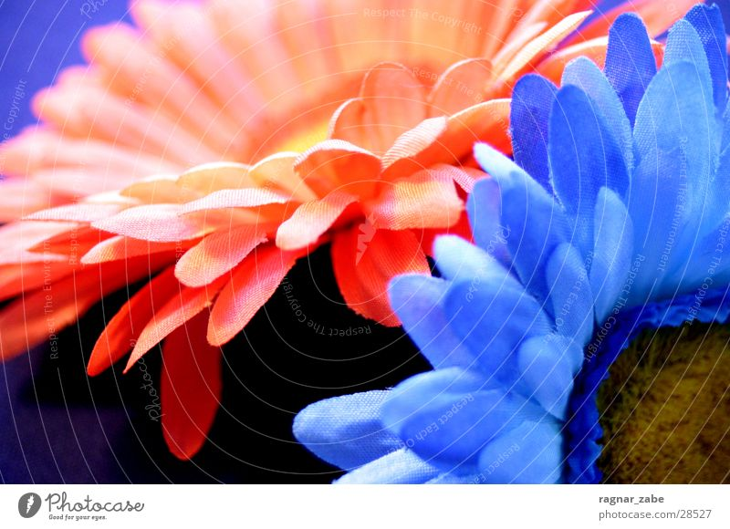 Blue Orange Kitsch Silk flower